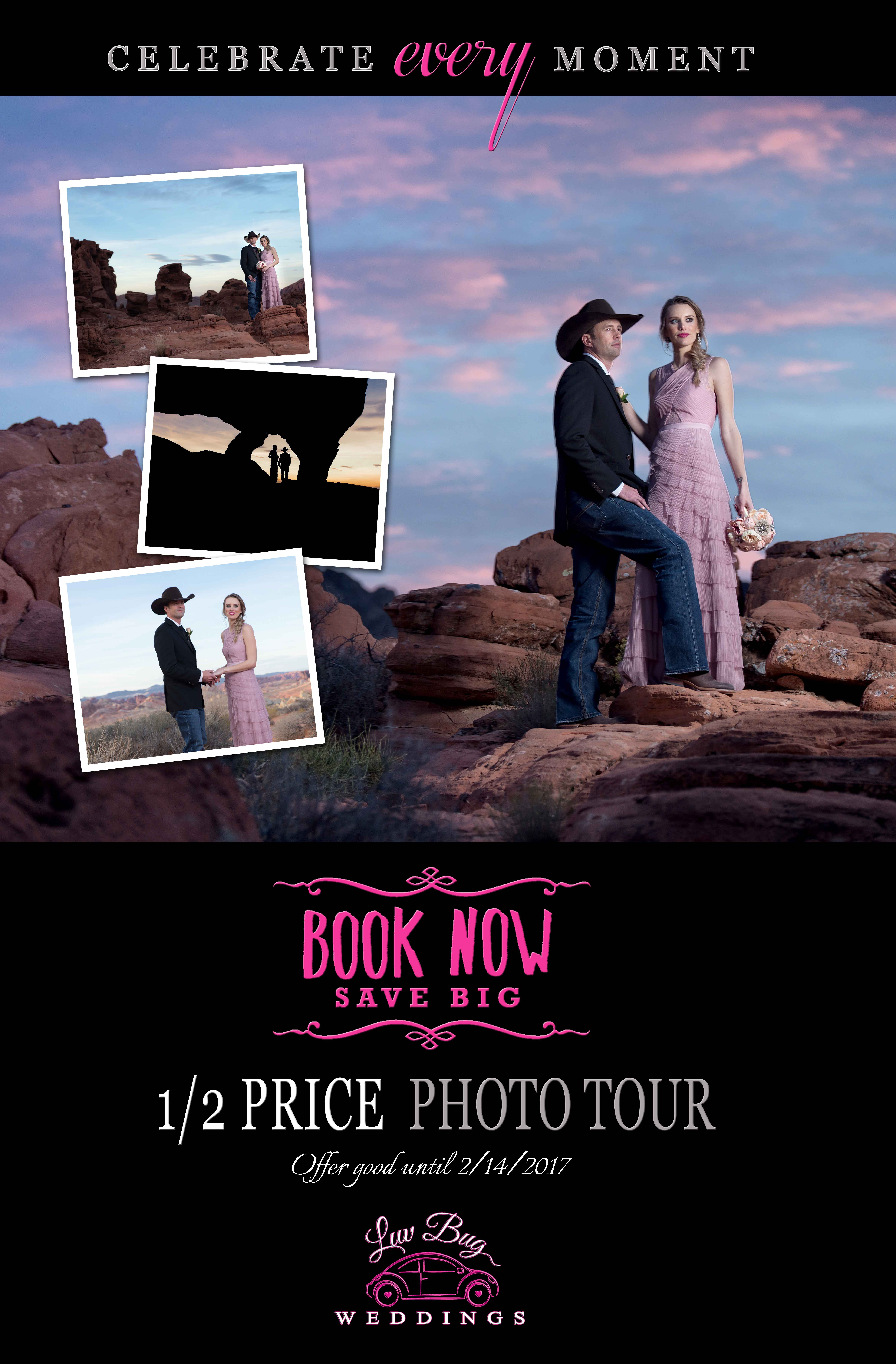 Valley of Fire Wedding Special