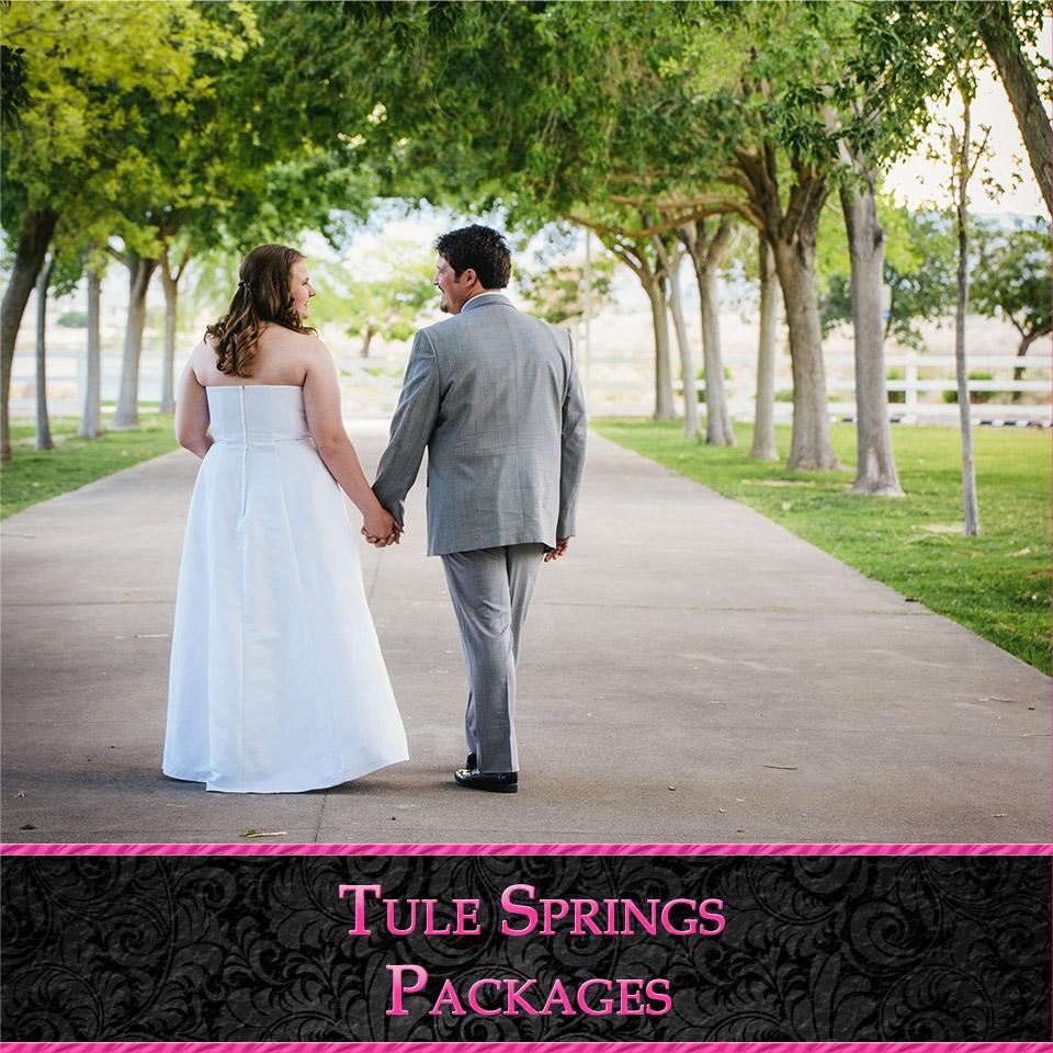Tule Springs Wedding