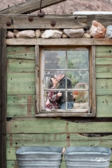 <h5>Nelson Ghost Town: Green Window</h5><p>                                                                                                                                                                                                                                                                                                                                                                                                                                                                                                                                                                                                                                    </p>