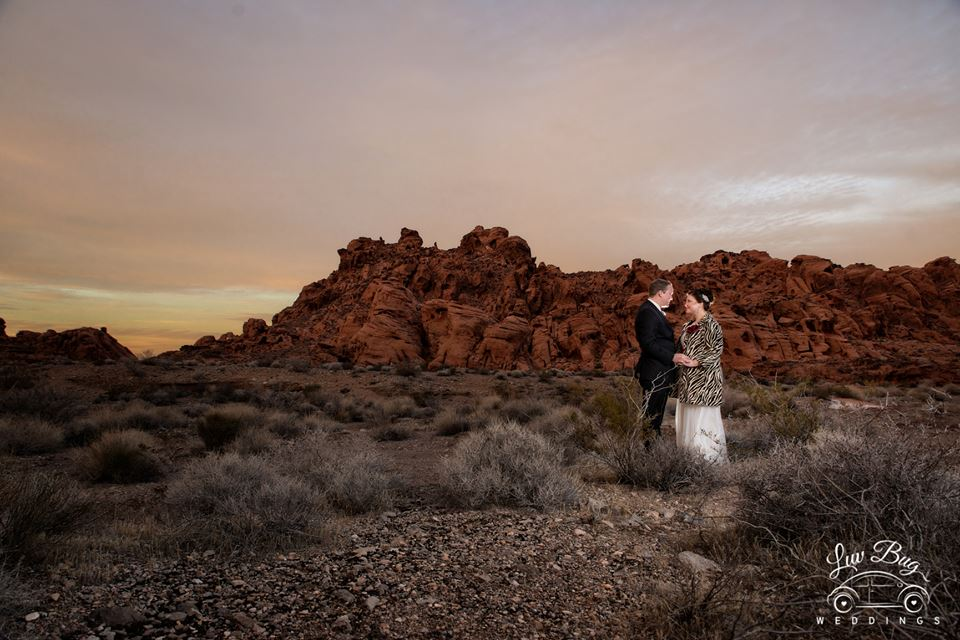 Neon Museum and Valley of Fire Wedding Tour