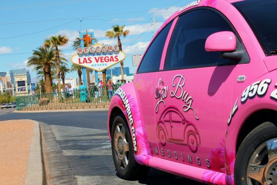 National Pink Day Leads To #PinkBeetle
